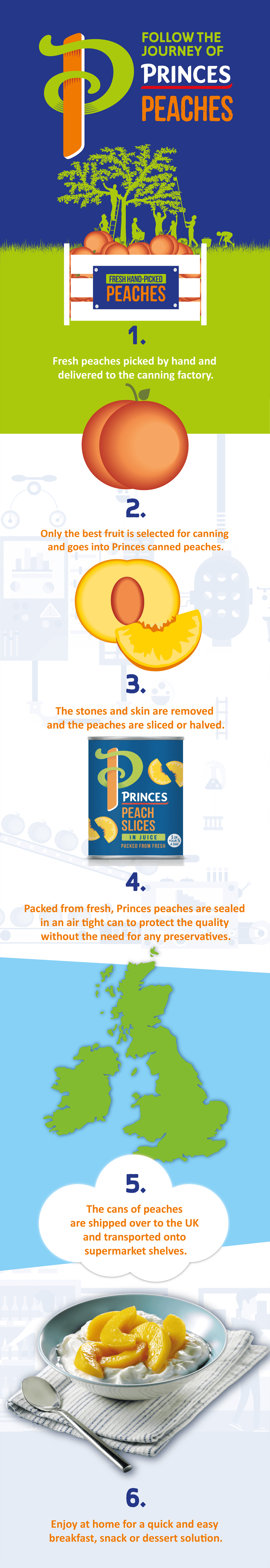 Princes Canned Peaches